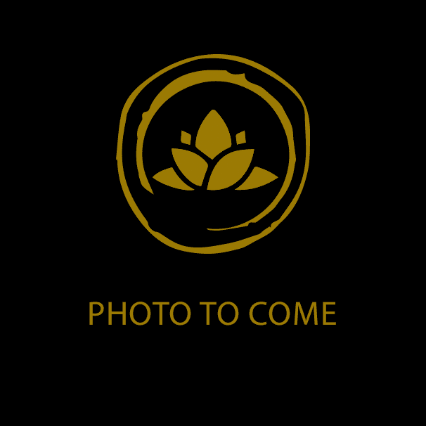 """lotus logo with words """"photo to come"""""""